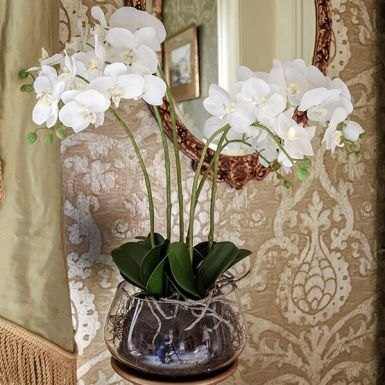 White Orchid in Fishbowl